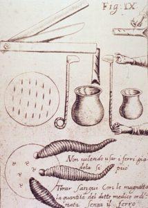 Гравюра с изображением инструментов кровопускания и пиявок